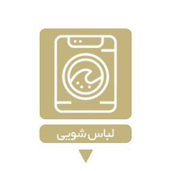 Cloth-Washer-gold